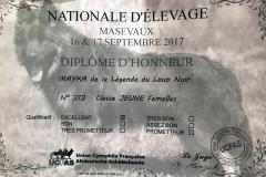 Diplome expo septembre 2017