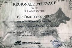 Diplome expo mars 2018