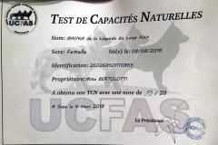 Résultats du Test de Capacités Naturelles de Mayka